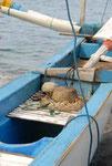 Bali - Fischerboot