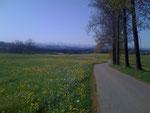 Frühjahrsausfahrt 3