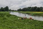 Grossrosenburg, Saale