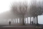 Brouillard à  Aix les bains Gd Port  (A)    SAVOIE  2016_02