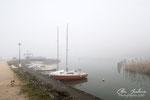 Brouillard à Mémard (Savoie 02_2016 ) 1