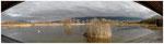 Obs des Aigrettes inondé - Bourget du Lac  01-2018