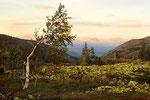 Кваркуш, плоскогорье Уральских гор. Закат