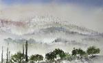Nebel über San Gimignano