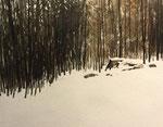 Lichtung im Schnee