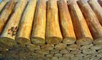 Tisch aus Teak Holz Baumstämmen - Yin & Yang Asiatika - Klaus Dellefant