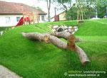 konviktgarten, waidhofen/ybbs