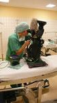 ... damit der Zuschauer die Perspektive des Patienten hat ....