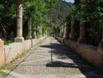 . . . einem kleinen Park der aus arabischen Zeiten stammt