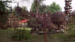 Blick durch den Zaun in den Park