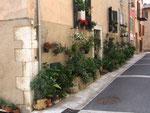 """""""Village fleuri"""" im wahrsten Sinne des Wortes: Das kleine Dorf Le Bar sur Loup"""