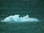 Immer wieder haben uns Eismassen «gekreuzt»