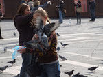 Das Füttern der Tauben ist eigentlich inzwischen verboten