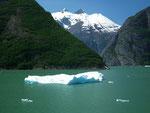 Schneebedeckte Berge und gekalbte Eismassen . . .