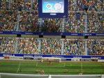 Etwa 45'000 Figuren wurden im Stadion platziert !