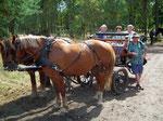 «Obligatorisches» Touristenbild: Pferdekutsche nach vollbrachter «Leistung»