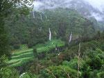 Saftiges Grün im «Hochland» auf über 1300 m.ü.M