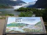 Erster Blick auf dem Fussmarsch zum Mendenhall Glacier