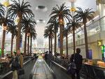2½ Std. «Beine vertreten» im fantastischen Airport mit künstlichen Palmen