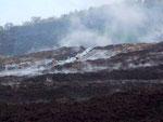 . . . und unmittelbar daneben die neuesten Vulkanausbrüche noch dampfend . . .