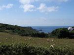 Wer nicht im und für den Tourismus arbeitet betreibt Landwirtschaft und hält sich Schafe.