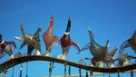 und damit den einheimischen Wasservögeln die Ehre erwiesen.