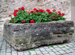 Alter Brunnentrog wurde zum Blumentrog