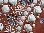 Wie recht der Erbauer des wunderschönen Shell Gardens hat !