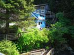 Hübsche, aber einfache Holzhäuser in saftigem Grün