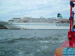 Ebenso die grosse Passagierschiffe: Amadea der Reederei Phoenix
