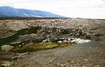 Die Insel besteht fast nur aus Lava-Gestein