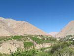 Von hier kommt ein Teil des guten chilenischen Weins