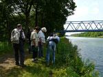 Am Mittellandkanal (MI), Juli 2012