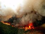 Les énormes flammes dégagent une chaleur extrème