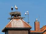 Rühstädter Impressionen  -  Das Besucherzentrum - Foto: Wolfgang Ewert