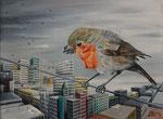 uccellaccio - 40 x 30