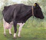 「17歳の牛」 2012 アクリル