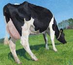 「牛と春」 2013 アクリル