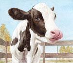 「子牛と秋」2015 水彩