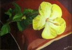 L'hibiscus jaune HCT 19x27 2014 Vendu