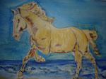 Cheval (Acrylique 30x40)