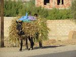 in den Dörfern