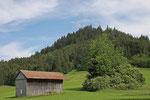 Wanderung von Eisenberg-Zell zum Schlossweiher