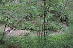 Nesselwang, Wasserfallweg