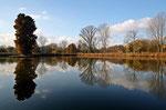 Teich im Schlosspark (Winter), Herten