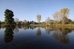 Teich im Schlosspark (Herbst), Herten