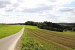 Halsenbach im Hunsrück