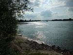 und dann plötzlich.... der Rhein