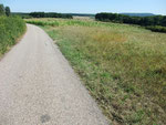 durch die Ardennen