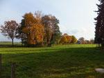 der Herbst verzaubert